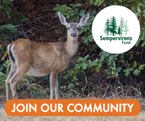 Sempervirens Fund - Join Our Community