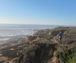 A 1-mile trail connects the main Bean Hollow beach and Pebble Beach. Molly Lautamo photo.