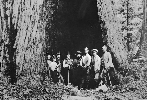 The charter members of the Sempervirens Club at the park. Photo courtesy Sempervirens Fund.