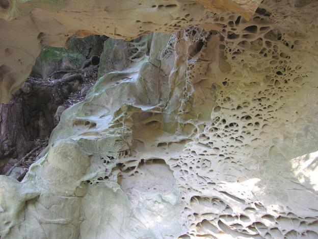 Tafoni is a trippy sandstone structure found at El Corte de Madera. Photo by Miguel Vieira/CC.