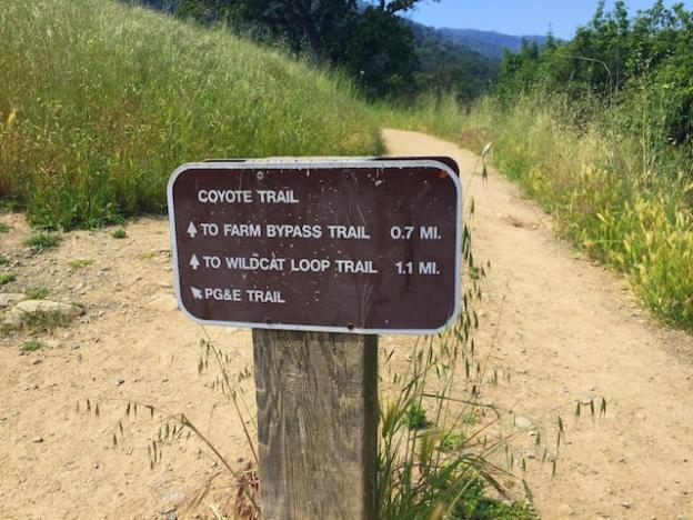 Trails are pretty well marked along this route.
