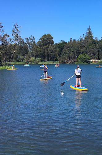 SUPers and paddleboats at Vasona Lake County Park in Santa Clara County