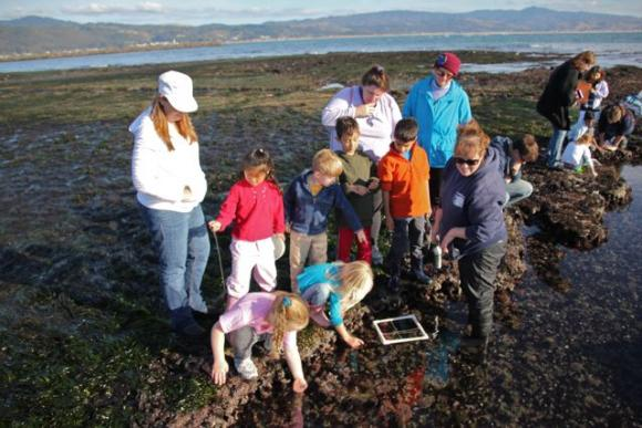 The Marine Science Institute's many field trip programs could reach more kids with the passage of AB988. Photo courtesy Marine Science Institute.