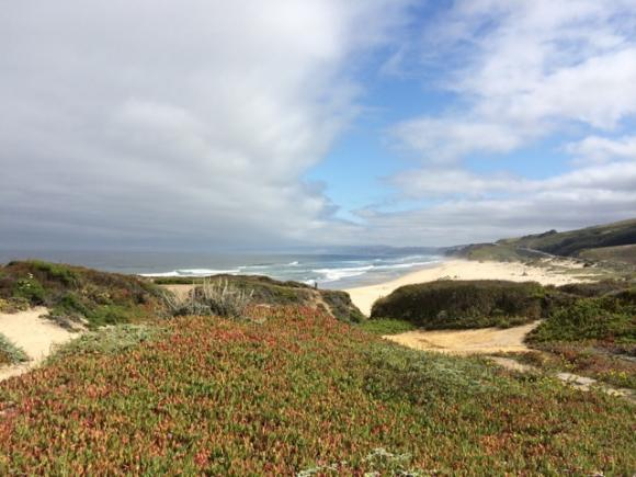 Big views, big sea, big sky at Pescadero State Beach. Hilltromper photo.