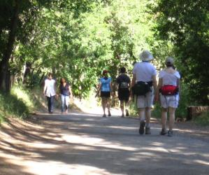On Sunday afternoons, trails in the lower section of the park double as community promenade. Traci Hukill photo.
