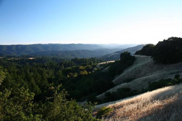 View from the Ancient Oak Trail.