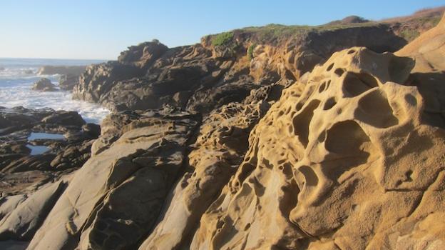 Honeycombed sandstone, or tafoni, gives the Bean Hollow shoreline an otherworldly look. Molly Lautamo photo.
