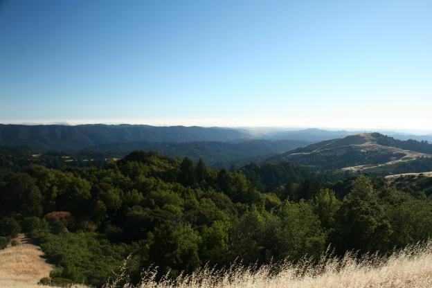 A view from the Ridge Trail.