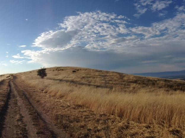 The Ridge Trail offers an ethereal perspective.