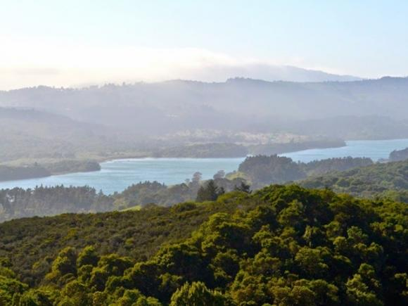 The Crystal Springs Trail gives the best view of the Peninsula. Kelsey Farabee photo.