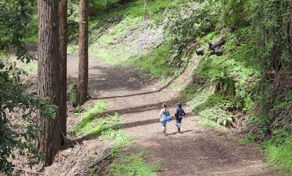 The Land Trust of Santa Cruz County wants to build 45 miles of trail in the next five years. Paul Zaretsky photo.
